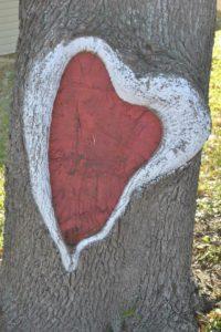 austin1 heart